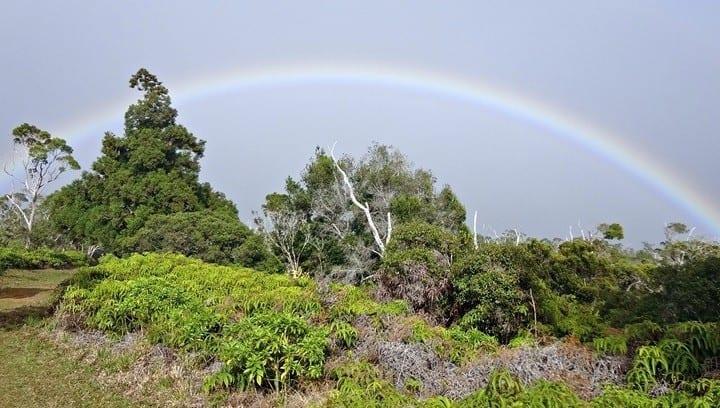 Kauai Rainbow in the fog